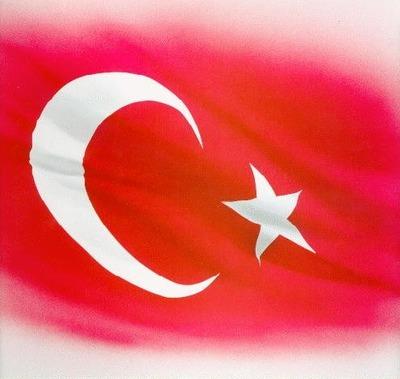 Wwwresimcitycom_turk_bayragi_resi_4